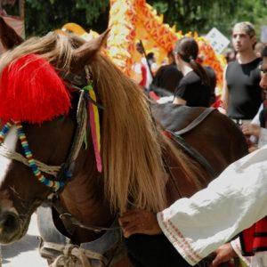 Reiter in Tracht mit seinem geschmückten Pferd