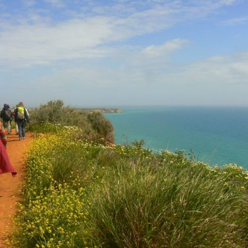 Freie Plätze auf unserer Frühlingsreise in der Algarve!