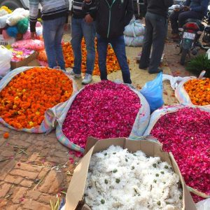 Blumenmarkt mit Säcken voll Tagetes und Rosen