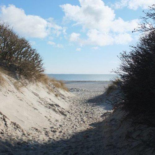 Strandzugang zwischen Dünen zum Nieblumer Strand