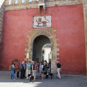 tour de sens Gruppe vor dem Eingang des Alcazars