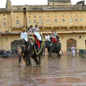 Elefanten mit Besuchern im Fort Amber