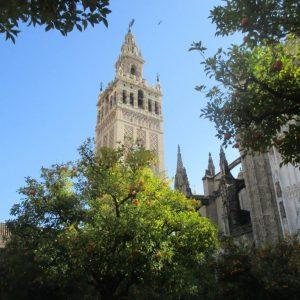 Die Kathedrale von Sevilla im Hintergrund. Im Vordergrund Orangenbäume