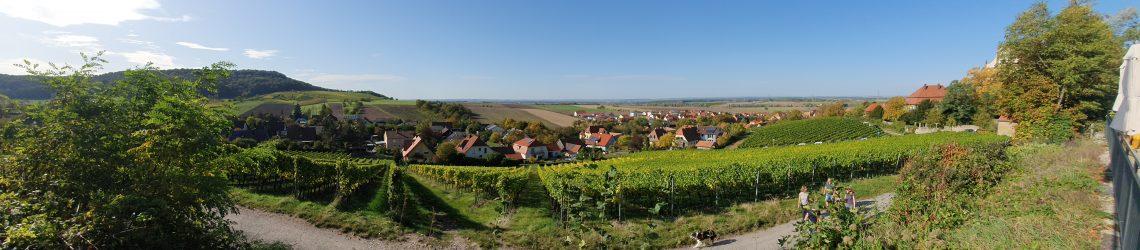 PAnoramablick auf den Weinort Castell