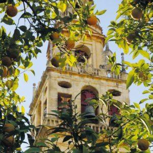 Der Glockenturm der Giralda in Sevilla