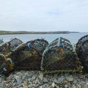 Fischreusen an der Küste