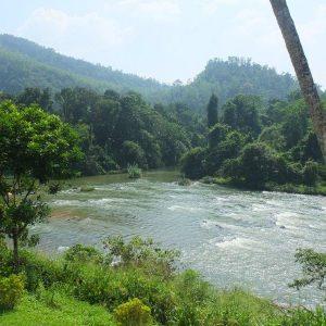 Wilde Flusslandschaft
