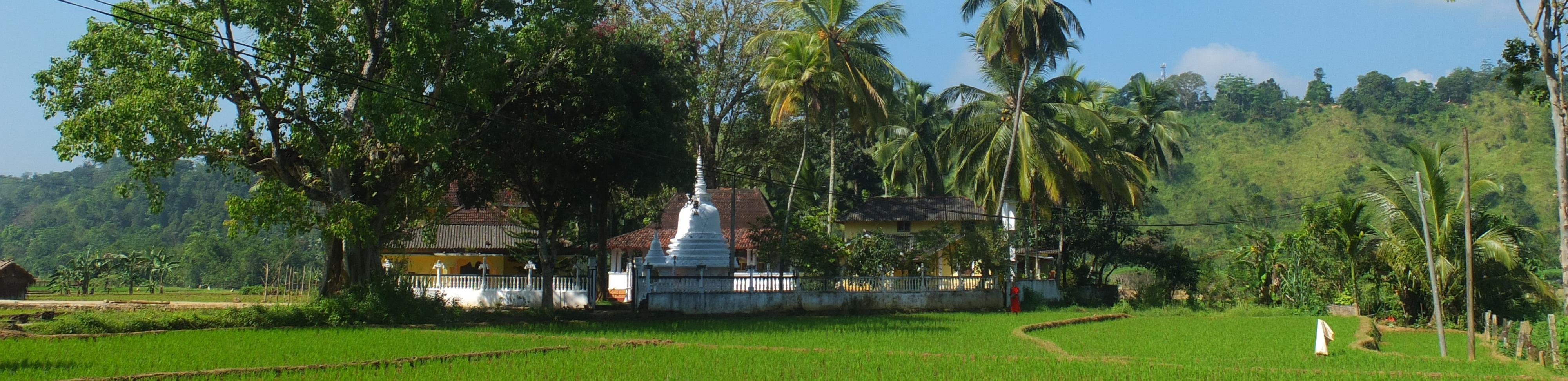 Sri Lanka: Die Düfte von Ceylon inklusive Gruppenflug