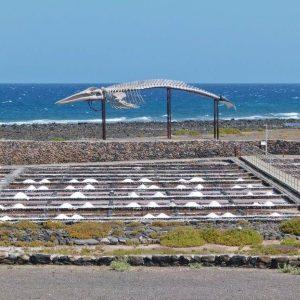Salinen von Isla Cristina