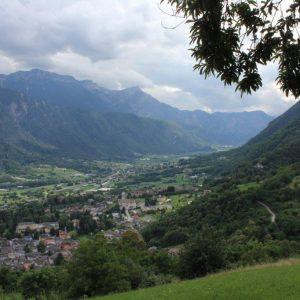 Blick auf das Städtchen Borgo im Valsugana. Im Vordergrund befinden sich Zweige eines Kastanienbaums