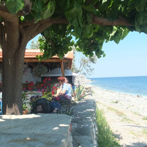 Blühende Kirschbäume und kristallklares Meer in Griechenland