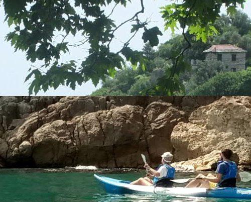Eine Foto-Collage aus Olivenbäumen und Kajakfahrern vor der Felsküste