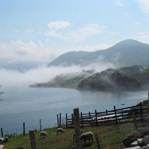 Fjord im Nebel