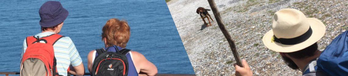 Foto-Collage aus einem Foto, auf dem zwei Gäste aufs Meer schauen und einem Foto, auf dem ein Gast mit Hut und Stock einem kleinen Hund entgegen schaut