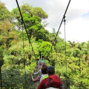 Gruppe auf einer Hängebrücke im Regenwald