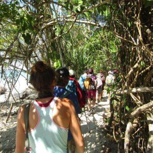 Auf dem Wanderpfad im karibischen Nationalpark Cahuita
