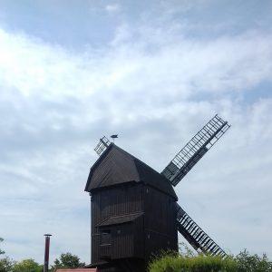 Bockwindmühle in Werder an der Havel
