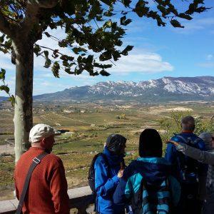 tour de sens Gruppe vor Riojaner Landschaft