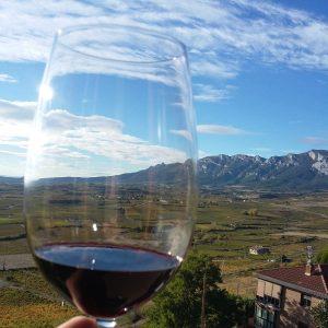gefülltes Rotweinglas vor Riojaner Landschaft