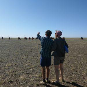 Zwei Reiseteilnehmer beobachten eine Kamelkarawane in der Wüste Gobi