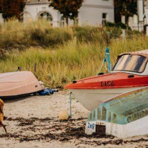 Fischerboot und ein Hund auf enem herbstlichen Strand