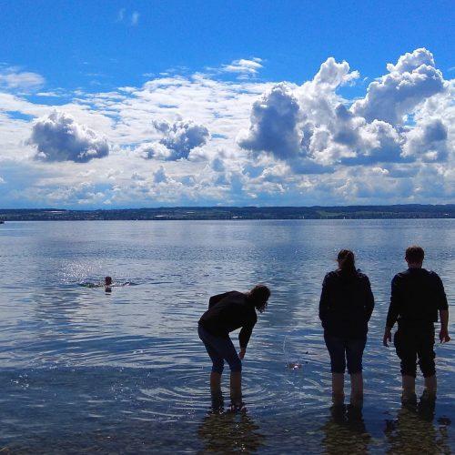 Silhouette von einigen Gruppenteilnehmern, die im seichten Wasser des Bodensees stehen. Im Hintergrund sieht man die Berge des österreichischen Seeufers