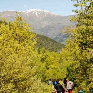 Wandergruppe in den Pyrenäen