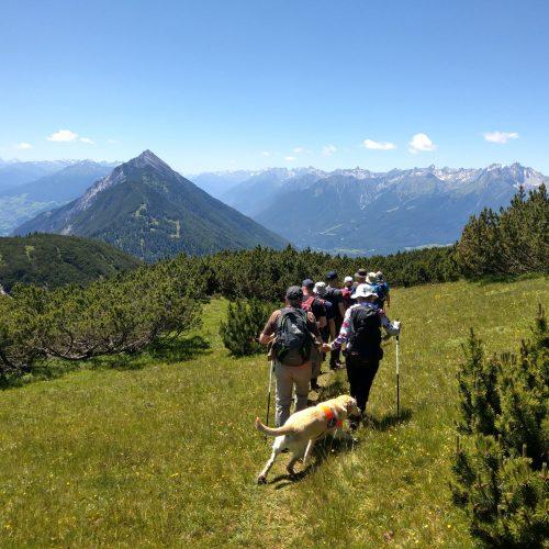 Unsere Wandergruppe (von hinten) auf dem Simmering. Ein Blindenführhund ist auch dabei.
