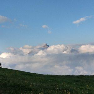 Ein Berggipfel ragt aus dem morgendlichen Nebel