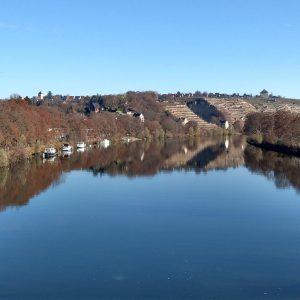 Neckar mit Weinbergen