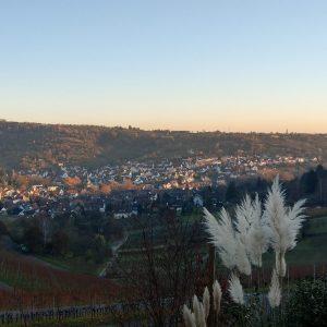 Blick auf das Weindorf Uhlbach