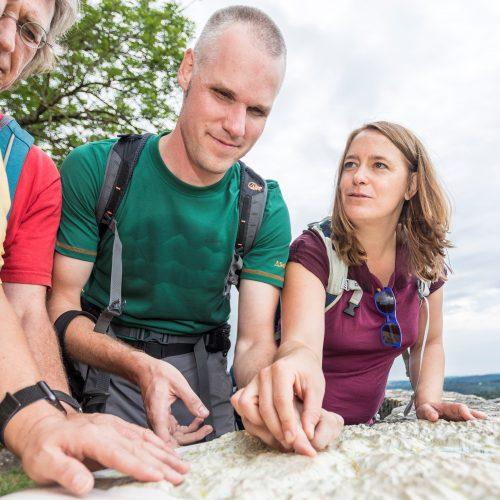 Sehende Begleiter für Sommerreisen in Deutschland gesucht
